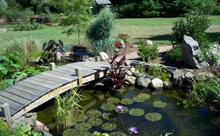 Ideas Complete Your Yard Decoration Koi Pond Backyard