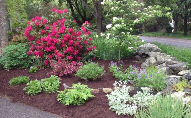 Ideas Driveway Garden Landscaping Entrance