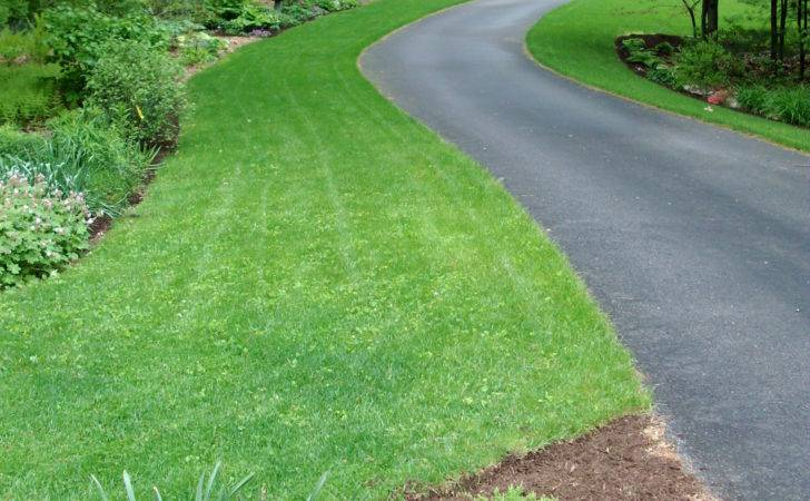 Ideas Driveway Landscaping Fence