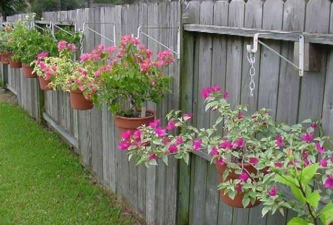 Ideas Landscaping Along Fence Pinterest Plants