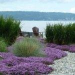 Ideas Outdoor Lankford Associates Landscaping Gardens Beach