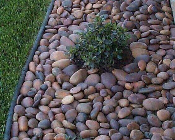 Ideas Zen Garden Tips Projects