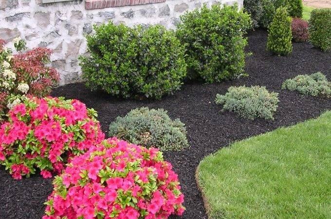 Improve Curb Appeal Your House Black Synthetic Mulch Garden