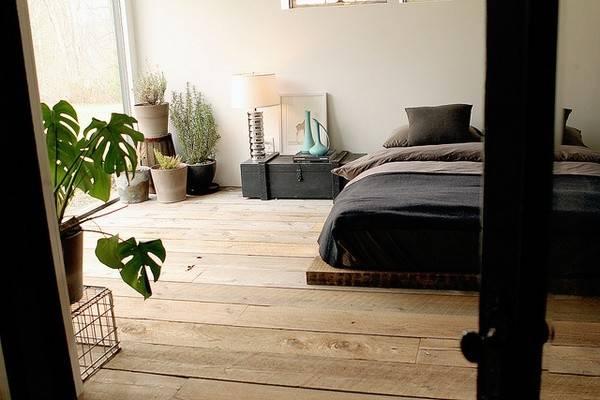 Indie Bedroom Inspiration Low Bed Floorboards Houseplants