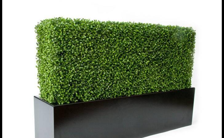 Indoor Artificial Boxwood Mat Squares Hedge Mats