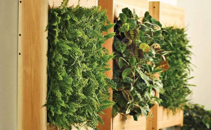 Indoor Living Wall Planters Green Head