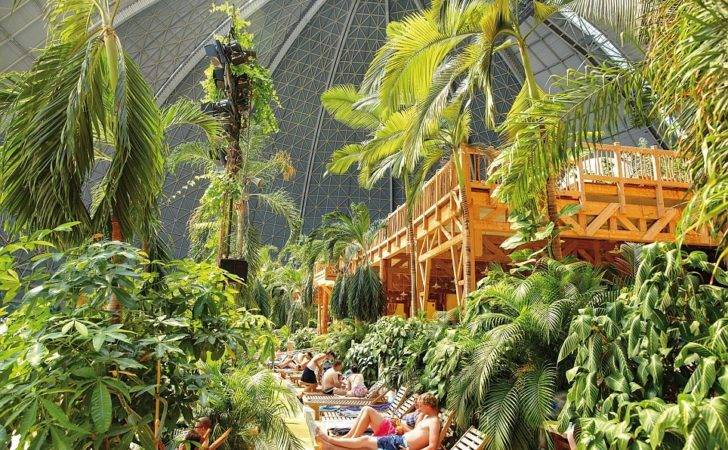 Indoor Rainforest Which Features Over Plants Spans