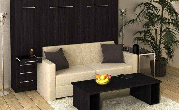 Inline Murphy Bed Hutch Sofa Closed