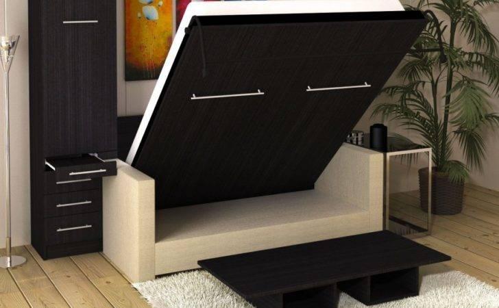 Inline Murphy Bed Hutch Sofa