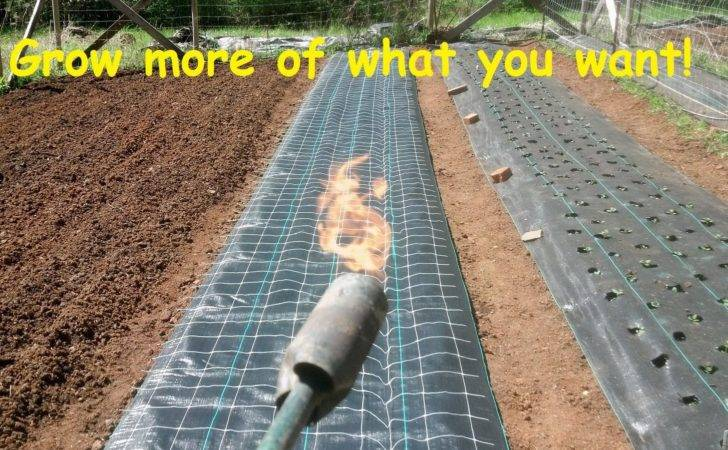 Install Burn Holes Landscape Weed Barrier Fabric Youtube
