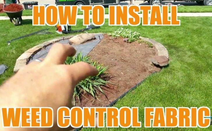 Install Weed Barrier Fabric Landscaping Lawn Care Youtube