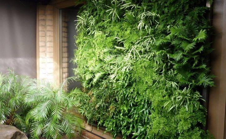 Installation Los Altos Residence Floraframe Living Wall Kits