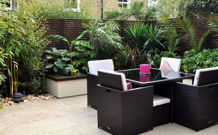 Instant Jungle Effect Invested Mature Tropical Style Plants
