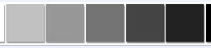 Interior Design Color Schemes Together Concept Accent