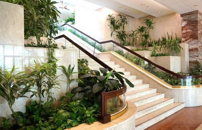 Interior Design Trend Plants Mirror