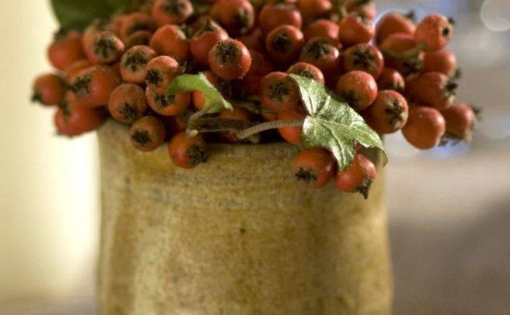 Ivy Red Berries Fill Egg Cup Sprigs Bright