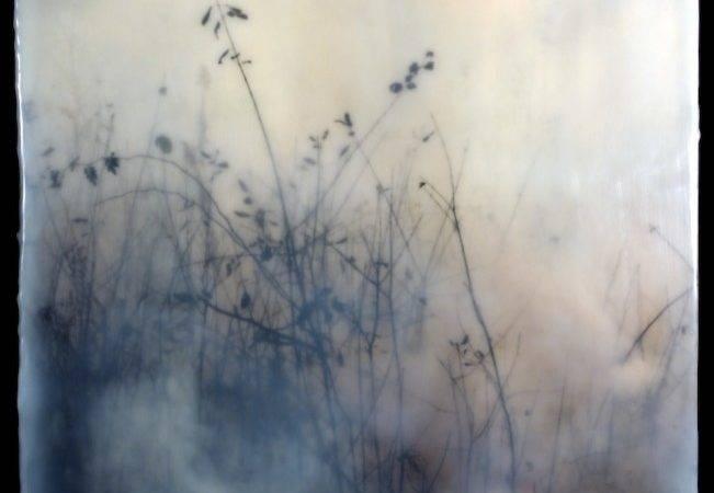 Jane Fulton Alt Interview Burn Lenscratch