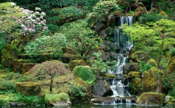 Japanese Gardens Portland Oregon Nature