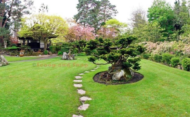 Japanese Gardens Scoop Snap