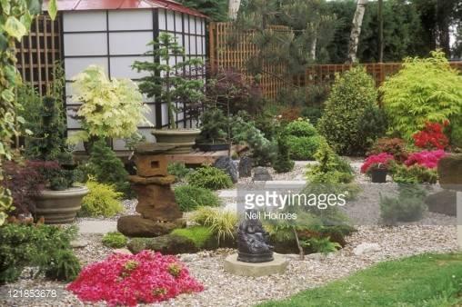 Japanese Style Garden Gravel Paving Conifers Statue
