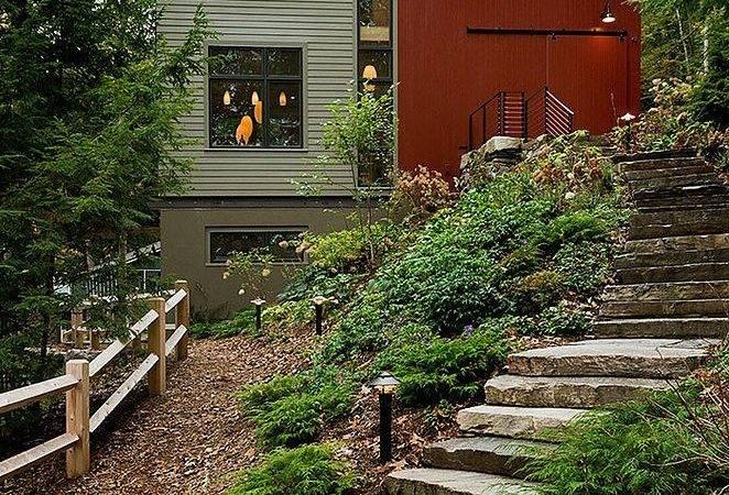 Just Forest Grass Modern Guest House Odell Construction