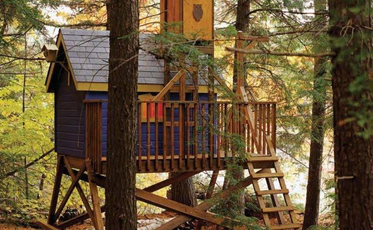 Kids Tree House Plans Designs Galleryhip Hippest