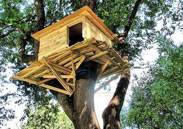 Kids Treehouse Designs Wants One Has All