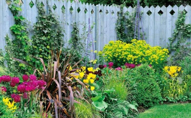Kindersley Limited Flowers Fence Landscape Dorling