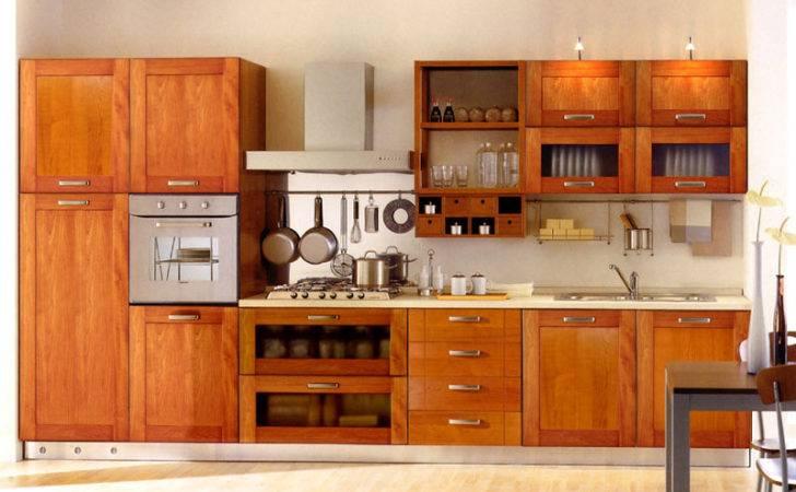 Kitchen Cabinet Designs Photos Kerala Home Design
