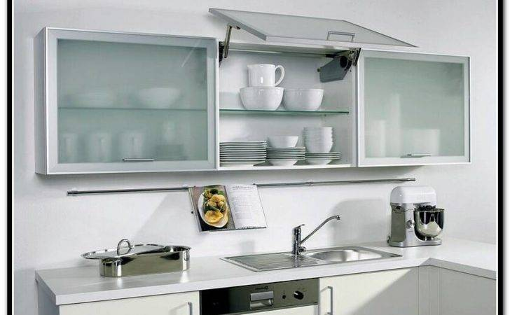 Kitchen Great Contemporary Frosted Glass Cabinet Doors