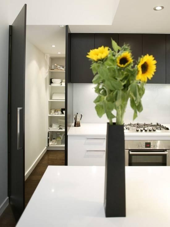 Kitchen Modern Walk Pantry Inside Pinterest