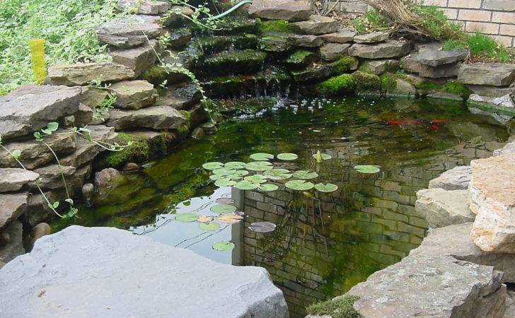Koi Fish Pond Design Ideas Backyard
