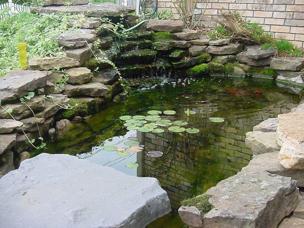 Koi Fish Pond Design Ideas Backyard