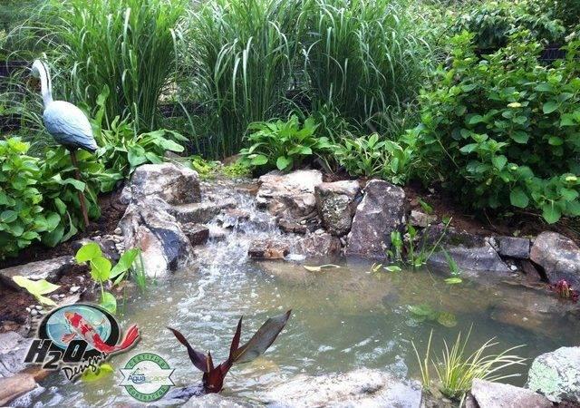 Koi Pond Backyard Small Ideas Your Kentucky Landscape