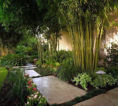 Landscape Architecture Tropical Garden Bali Floating Leaf Eco