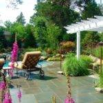 Landscape Design Hot Tips Tricks Decorilla