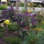 Landscape Design Ideas Plans Landscaping