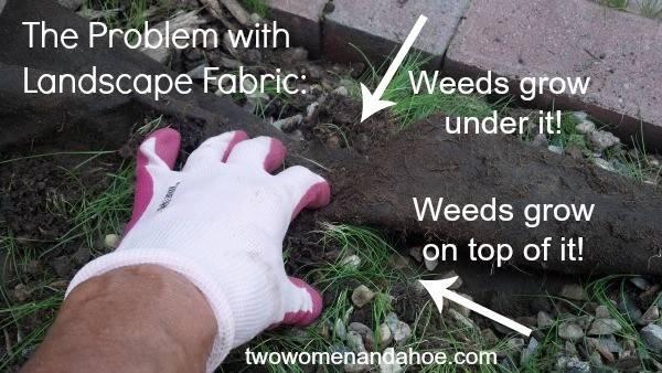 Landscape Fabric Two Women Hoe