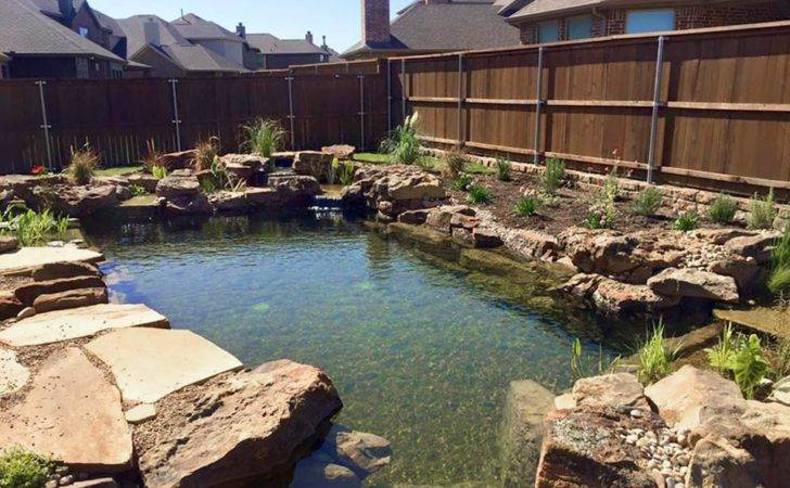 Landscape Pond Waterfall Ideas Your Backyard Plano