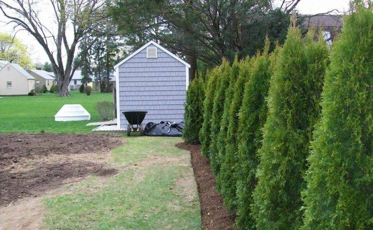 Landscaper Newington Landscape Design Construction