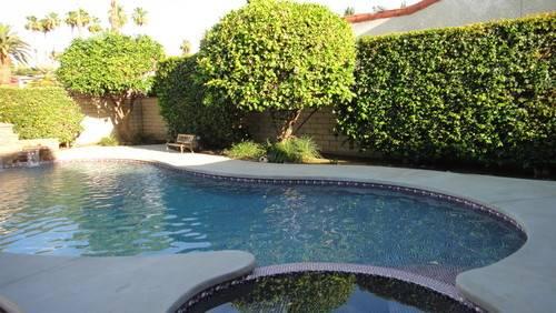 Landscapers Need Help Plantings Around Pool