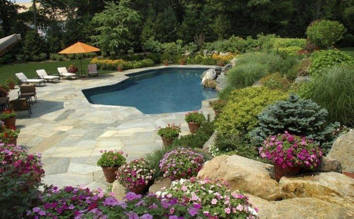Landscaping Around Pool Outdoors Pinterest