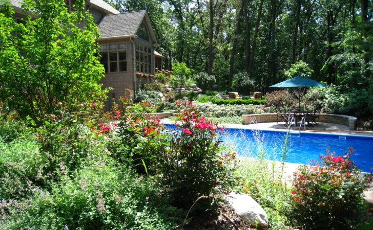Landscaping Around Pool Outside Space Pinterest