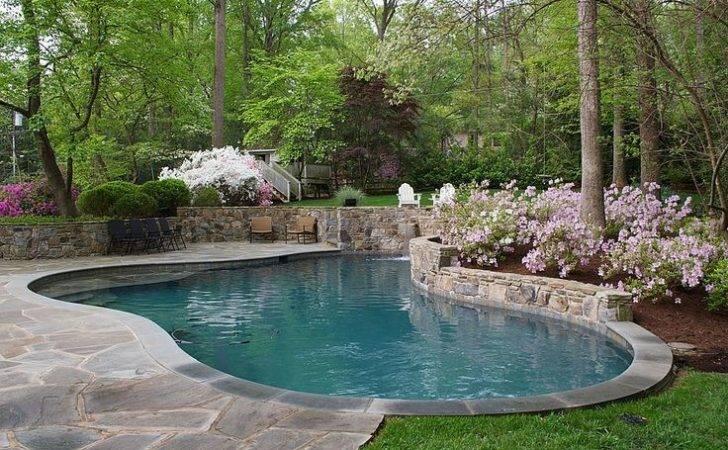 Landscaping Around Pool Pools Pinterest
