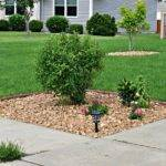 Landscaping Driveway Ideas