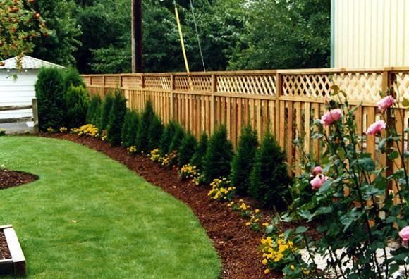 Landscaping Ideas Backyard Near Fences