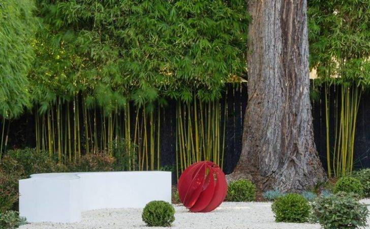 Landscaping Pinterest Gardens Bamboo Hedge Screening