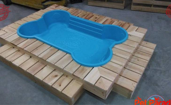 Large Bone Shaped Blue Dog Play Pool Heavy Duty Chew Resistant