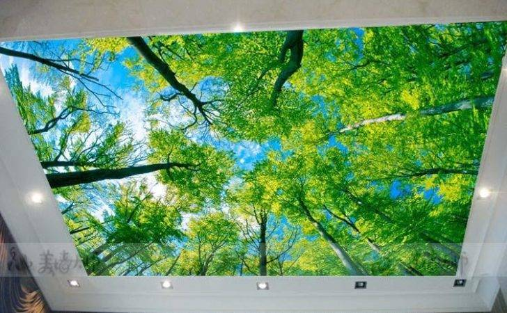 Large Custom Murals Suspended Ceiling Living Room Bedroom