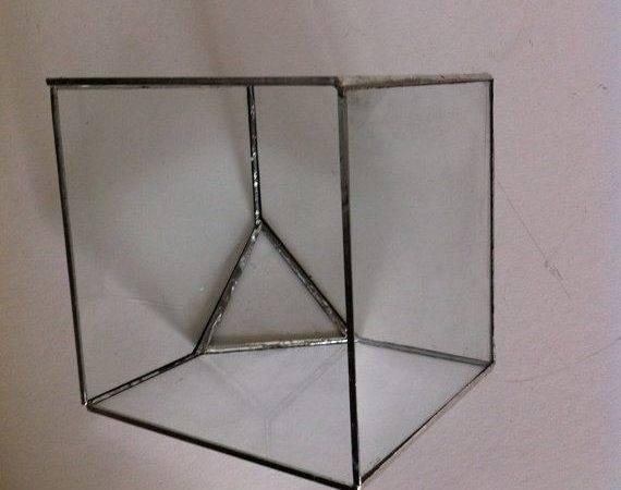 Large Glass Cube Terrarium Pinterest